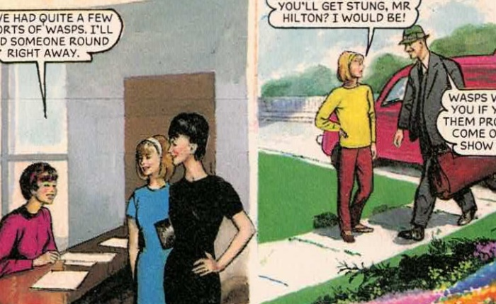 Mum's On The Council: The world's most boring comicstrip